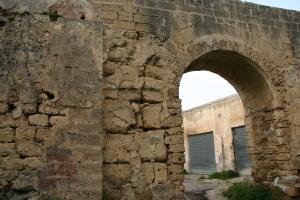 Canale(detto Saia)che convoglia l'acqua al mulino.Foto Aiello 2009