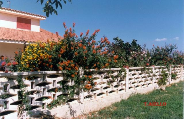 Case di campagna con giardino.