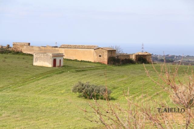 Terreni coltivati a maggese e a grano.  Foto di T.Aiello