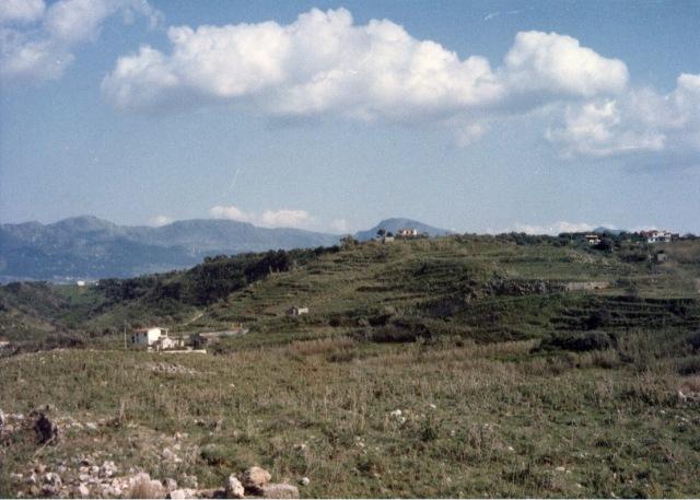 Paesaggio agrario dopo il disboscamento.